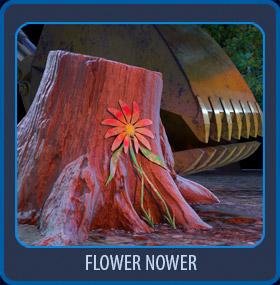 Flower_Nower